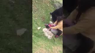 Gambar cover Karaman'da ölümünü cep telefonuna çekmiş