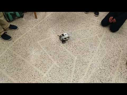 Robots in Action