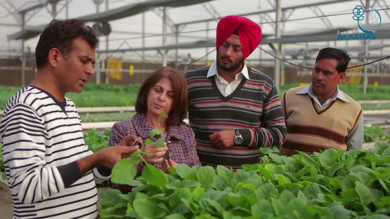 Indo Israel Agricultural Project English full movie