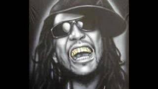 Lil Jon Petey Pablo feat - Freek a leek