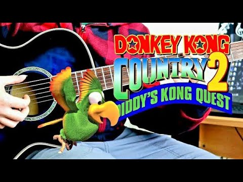 Stickerbush Symphony Acoustic Guitar Cover - Donkey Kong Country 2 - Fingerstyle