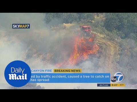 Wildfire breaks out after car crashes near Santa Clarita - Daily Mail
