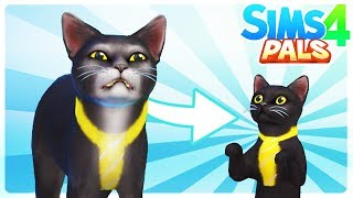 SIR MEOWS A LOT IS A KITTEN!! - Sims 4 Pals