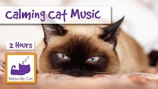 2 HOURS of Calming Cat Music. For Scared Cats During Fireworks and Storms.