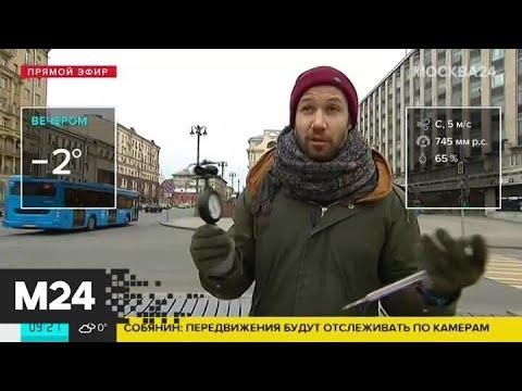 """""""Утро"""": снег и порывистый ветер ожидаются в понедельник в Москве - Москва 24"""