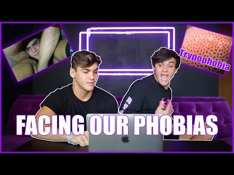 FACING OUR PHOBIAS