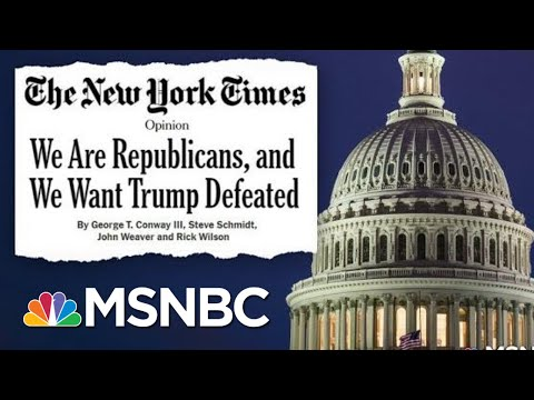Republican Strategists Using Their Methods To Defeat The Republican President | Deadline | MSNBC