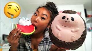 AMAZING SQUISHY PACKAGE! JennaLynSquishies Package
