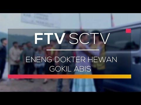 5800 Download Gambar Hewan Gokil HD