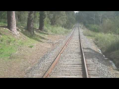 My trip on the Yarra valley railway