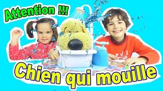 JEU FUN - ATTENTION au CHIEN qui MOUILLE ! - SOGGY DOGGY game - On Joue en famille 😀 Démo Jouets