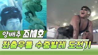 양배추 조세호의 수중발레, 어렵지않아요 [스타실험] K…
