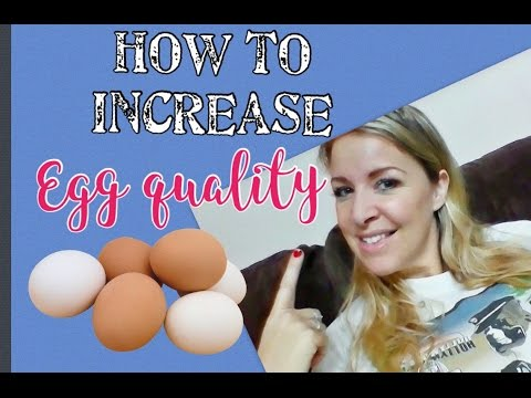 Natural Ways To Ovulate Multiple Eggs