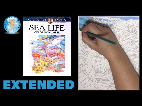 Creative Haven Sea Life Color By Number Adult Coloring Book Fish Reef Extended - Family Toy Report