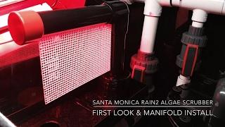 Santa Monica Filtration Rain2 Algae Scrubber | First look & Manifold Mounting - Install