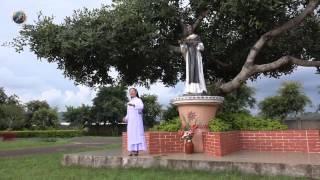 """Bài hát: """"Tâm tình mến yêu"""" - Lm Thái Nguyên, Trình bày Sr Nguyễn Dự - Đa Minh Rosa Lima"""