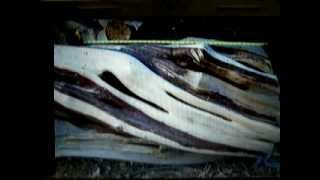 High Quality Rustic Juniper Log Furniture, Custom Built, Lodge Or Log Home Style