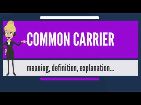 What is COMMON CARRIER? What does COMMON CARRIER mean? COMMON CARRIER meaning & explanation