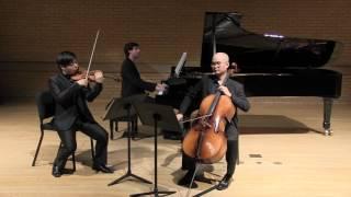 """Voertman Piano Trio playing Dvorak Piano Trio No.4 """"Dumky"""" 5 mov"""