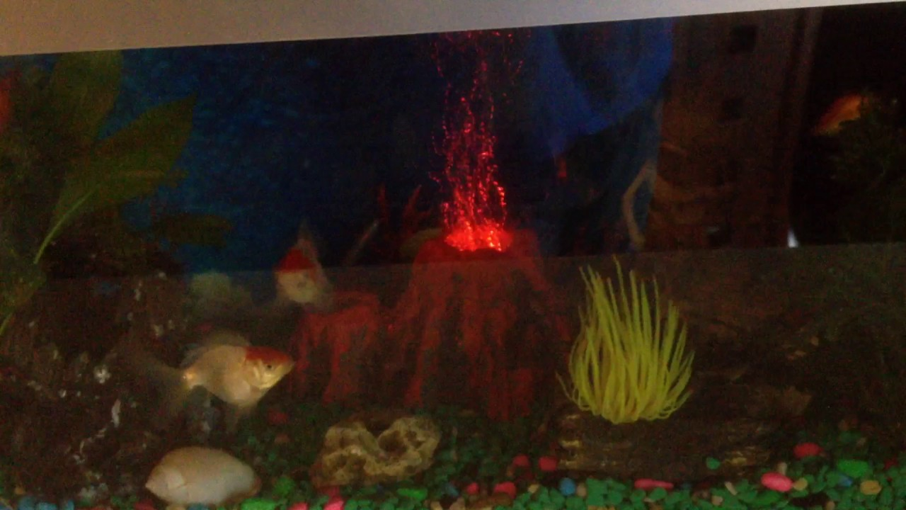 Fish tank volcano - My Fish Tank Volcano