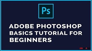 Adobe Photoshop Video Tutorial : The Basics for Beginners (AllInOneTutorial com)