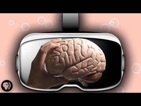 Your Brain in Virtual Reality