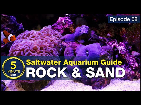 See How Easy Live Rock And Sand Selection Can Be! Aquascaping A Beginner Saltwater Aquarium