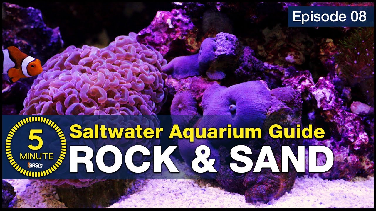 See How Easy Live Rock And Sand Selection Can Be Aquascaping A