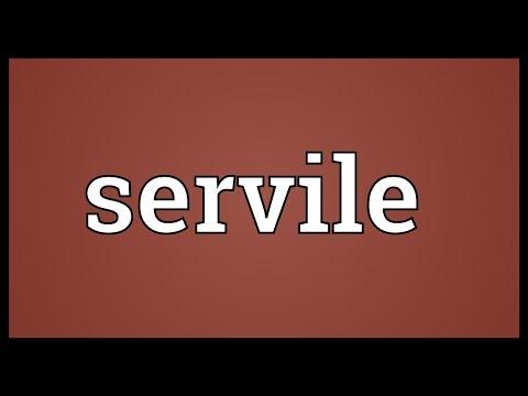 Header of servile