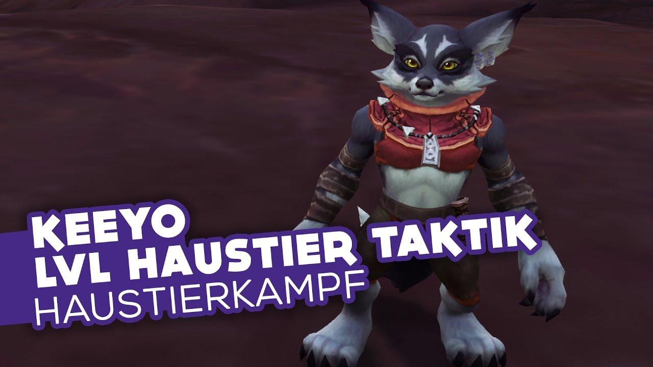 Keeyo Lvl Haustier Taktik Bfa Weltquest Haustierkampf Guide Wow Youtube