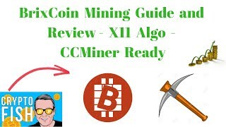 BrixCoin Mining Guide and Review - X11 Algo - CCMiner Ready