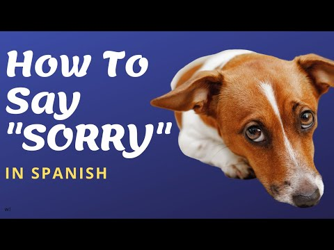 How to say sorry i dont speak spanish in