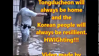 TDC, South Korea Flood of 1998