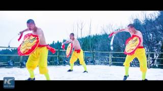 Harsh training: Shirtless monks practice Kung Fu despite snow