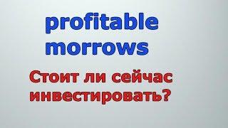 видео Обзор и отзывы о проекте Profitable Morrows