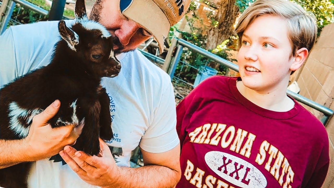 Download He's SO cute, can I keep him? 🥰 (making baby goat decisions 🧐)