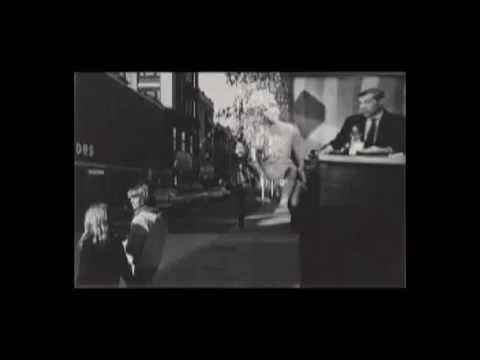 Lou Reed_Like a Possum-Photochrome video installation