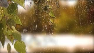 Футаж - Дождь, осень. ProShow Producer.