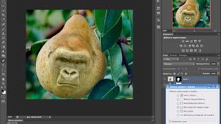 как скрестить грушу с обезьяной вставлять лица в любой предмет фотошоп cs6