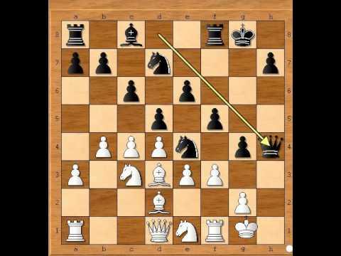 Bespomoćni Kralj HANSEN vs MALDGAARD - Damin gambit # 669