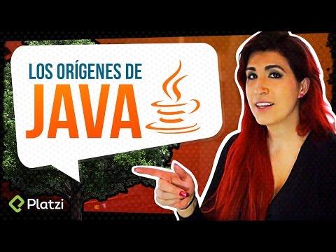 ¿Por qué Java es importante?