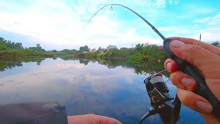 НИЧЕГО СЕБЕ Даже ЭТУ рыбу можно поймать на СПИННИНГ Рыбалка в обмелевшем пруду на топ вотеры