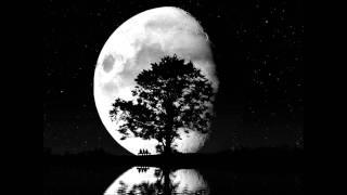 L.E.S. Frankie Gada - Walking On The Moon (Yanni Star Vocal Mix)