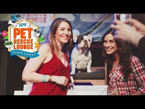 The Pet Rescue Lounge at SXSW by Petcube, Whistle, DogVacay, and Luuup