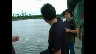 farming- Basa fish 10