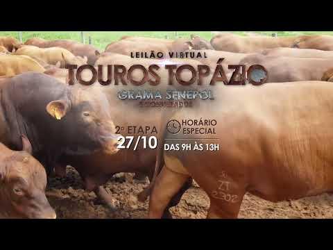 Leilão Topázio 60s 2a ETAPA