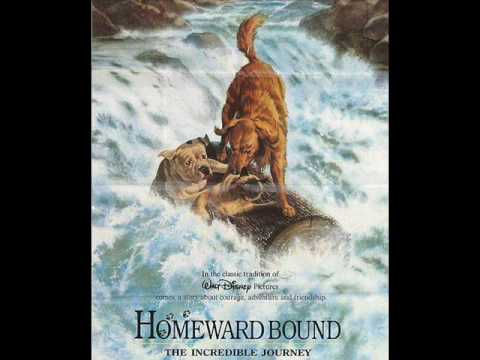 03. Just over That Next Hill (score) - Homeward Bound: The Incredible Journey OST