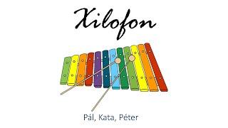 Hangszer ovi - Pál, Kata, Péter (xilofon) / Hungarian folk children song with animals