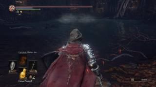 Holy Knight Hodrick, Sunset armor set & Sunset shield. DARK SOULS 3