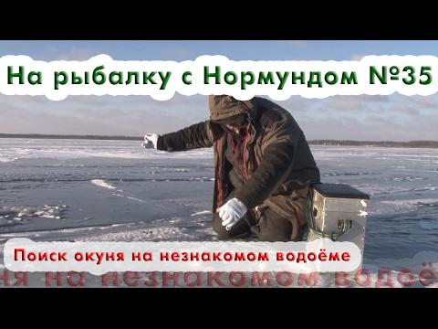 Поиск окуня на незнакомом водоёме : На рыбалку с Нормундом #35